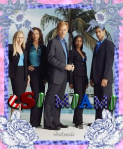 csimiami.jpg