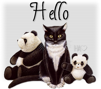 Hello_kittypanda_HA4.jpg