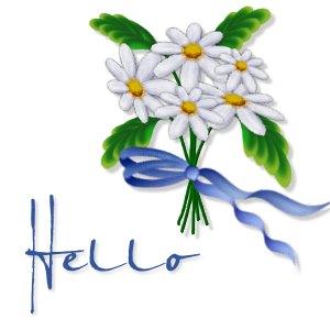 daisies_hello.jpg