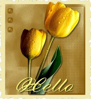 yaz-yellowtulips-hello.jpg