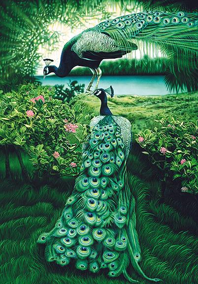 peacocks.jpg
