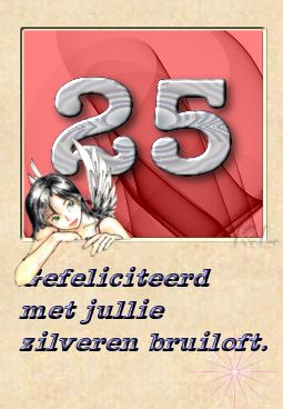 Huwelijk-zilvere-25.jpg